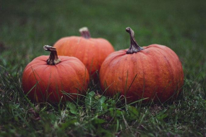 three pumpkins.jpeg